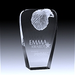 crystal eagle award